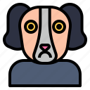 canine, community, dog, hound, pooch