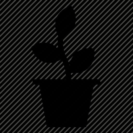 ecology, green, nature, plant, pot icon