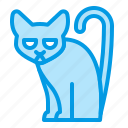 animal, bluetone, cat, halloween, luck, misfortune icon