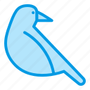 animnal, bird, bluetone, crow, halloween icon