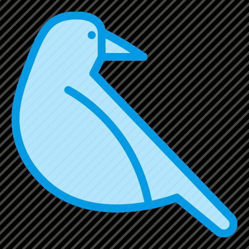 animnal, bird, bluetone, crow, halloween icon