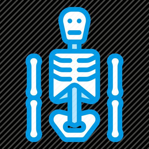 bluetone, bone, dead, death, halloween, skeleton, xrays icon