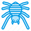 arachonophobia, bluetone, bug, halloween, horror, insects, spider icon