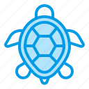 animals, marine, sea, summer, turtle icon
