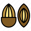 almond, nut, seed, organic, healthy