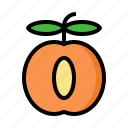apricot, fruit, vegan, vegetarian, nutrition