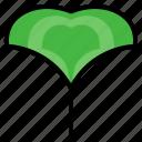 ginkgo, herbal, leaf, herb, plant