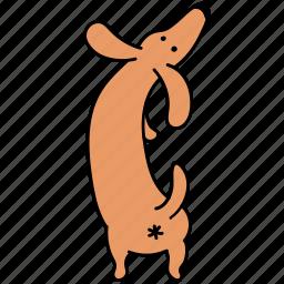animal, ass, butt, canine, dachshund, dog, pet icon