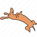 animal, canine, dachshund, dog, dream, lazy, pet icon