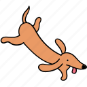 animal, canine, dachshund, dog, fly, pet, run icon