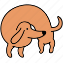 animal, back, canine, dachshund, dog, hunch, pet icon