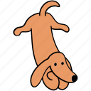 animal, attention, canine, dachshund, dog, listen, pet icon