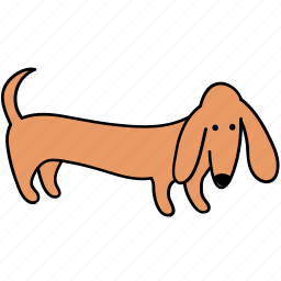 animal, canine, dachshund, dog, look, pet, stand icon