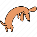 animal, back, canine, dachshund, dog, look, pet icon