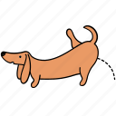 animal, canine, dachshund, dog, pee, pet, piss icon