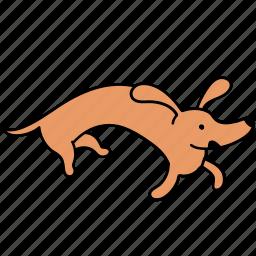 animal, canine, crazy, dachshund, dog, pet, run icon