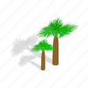 isometric, palm, sky, summer, travel, tree, turkey icon