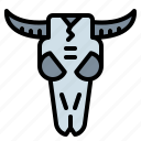 adornment, animals, bull, indian, skull