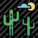 cactus, nature, sand, sun icon