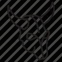 horn, cow, bull