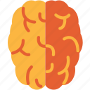 brain, head, mind icon
