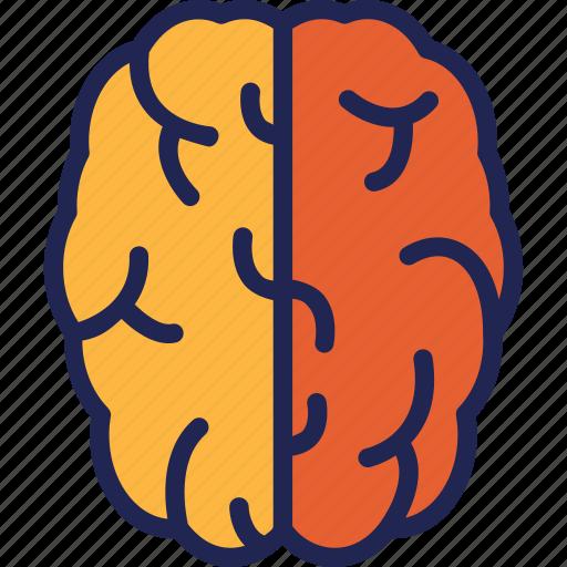 brain, head, mind, think icon