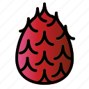 dragon, food, fruit, healthy icon