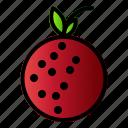 food, fruit, healthy, lychee