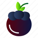 healthy, mangosteen, food, fruit icon