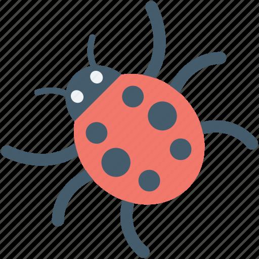 cybercrime, internet bug, malware, threat, virus icon