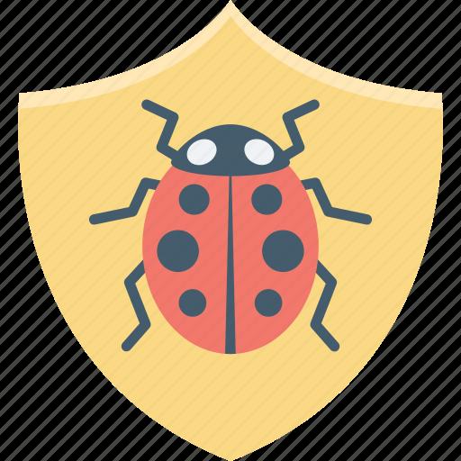 bug protection, bug shield, defence, internet bug, virus icon