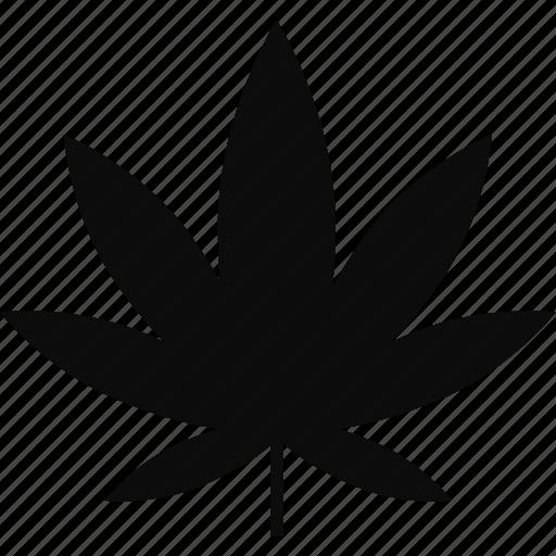 marijuana, medicine, plant, pot icon