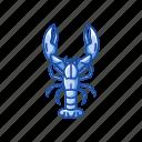american lobster, animal, crayfish, crustacean, freshwater, lobster, sea creature