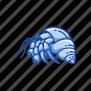 animal, crab, crustacean, hermit crab, sea creature, strawberry hermit crab icon