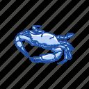 animal, crab, crustacean, red king crab, sea creature icon