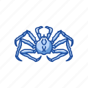 alaskan king crab, crab, crustacean, king crab, sea creature, seafood icon