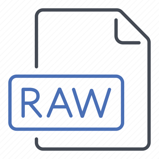 extension, file, format, raw unprocessed data icon
