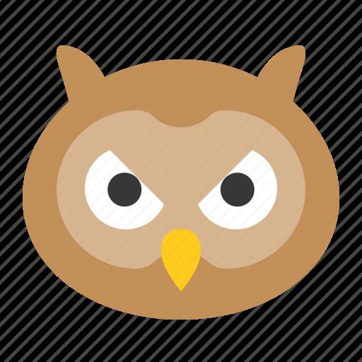 animal, bird, face, head, owl, wisdom, zoo icon