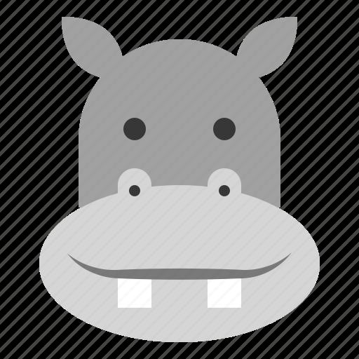 animal, face, head, hippo, hippopotamus, zoo icon