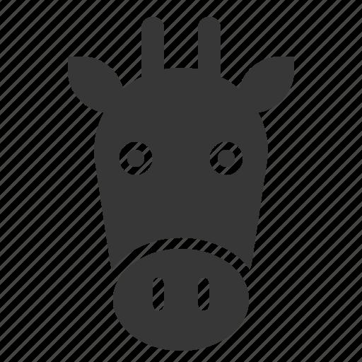 animal, face, giraffe, head, wild, zoo icon