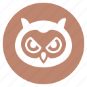 animal, bird, face, head, owl, wisdom, zoo icon