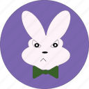 animal, bunny, bunny face, cute, easter, rabbit face, rabbit wink icon