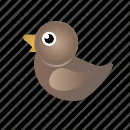 duck, female duck, mallard, mallard duck icon