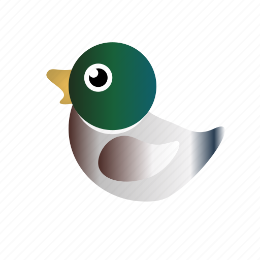 duck, male duck, mallard, mallard duck icon