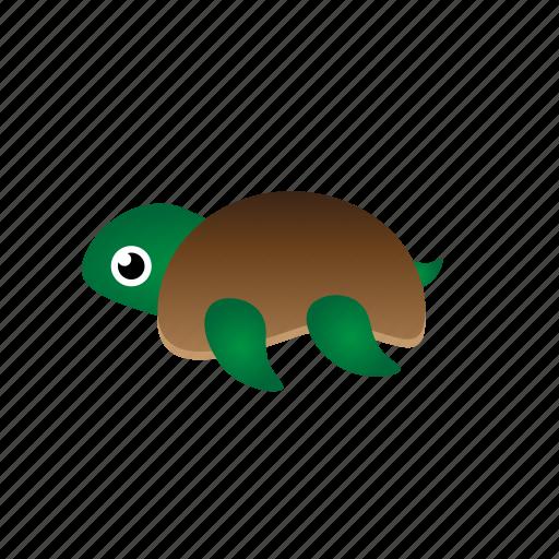 sea turtle, turtle icon