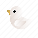 duck, white, white duck icon