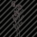 bouquet, floral, flower, garden, nature, spring