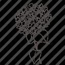 doodle, eco, floral, flower, garden, nature, spring icon