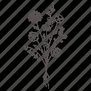 blossom, bouquet, floral, flower, leaf, nature, spring
