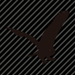 bird, flying, hunting, owl, zoo icon